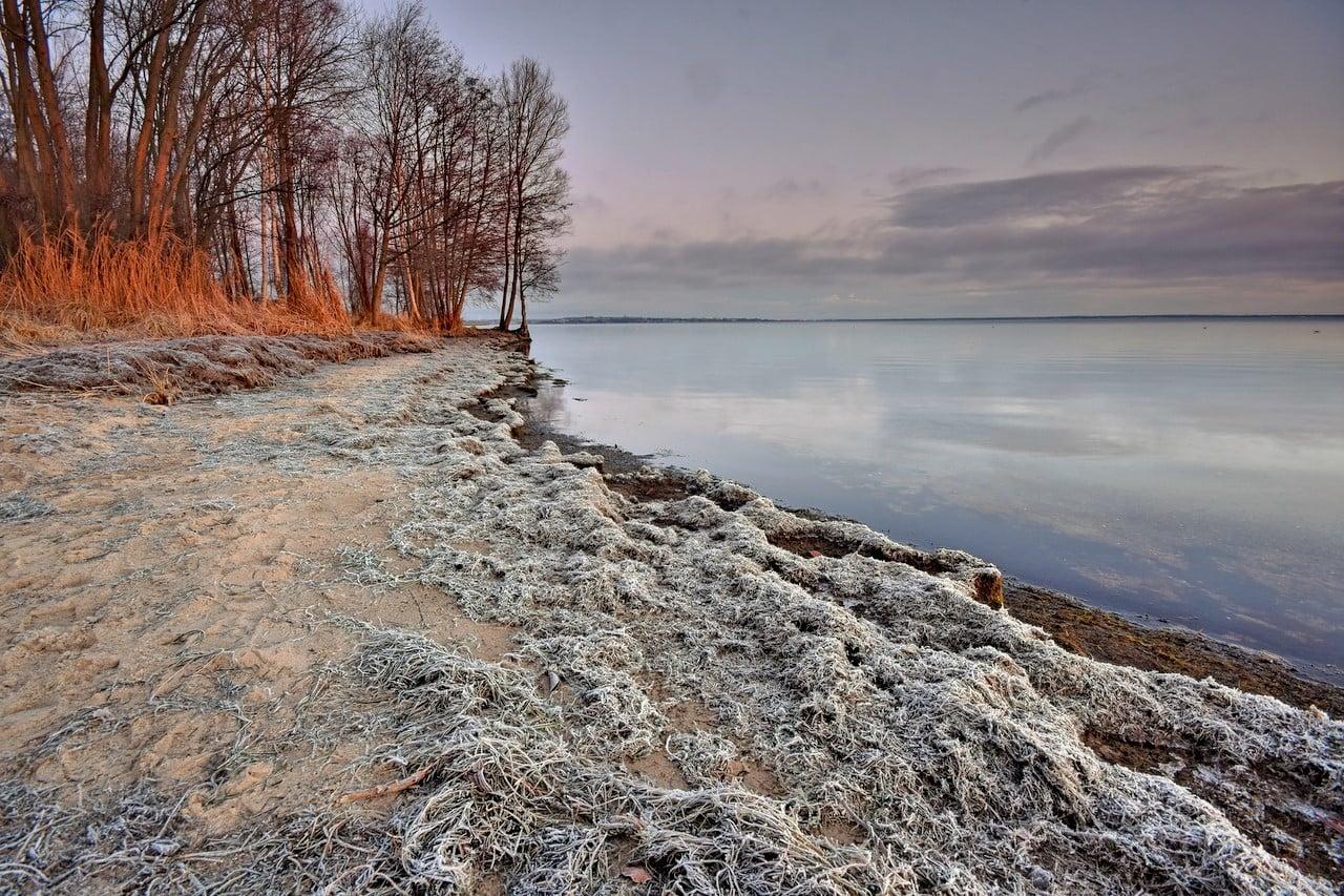 Foto Powiat Pucki. Świt z przymrozkiem nad Zatoką Pucką | ZDJĘCIA