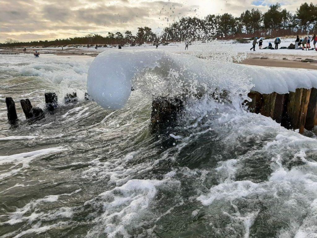 Nordowe Morsy, plaża Władysławowo - luty 2021, zima