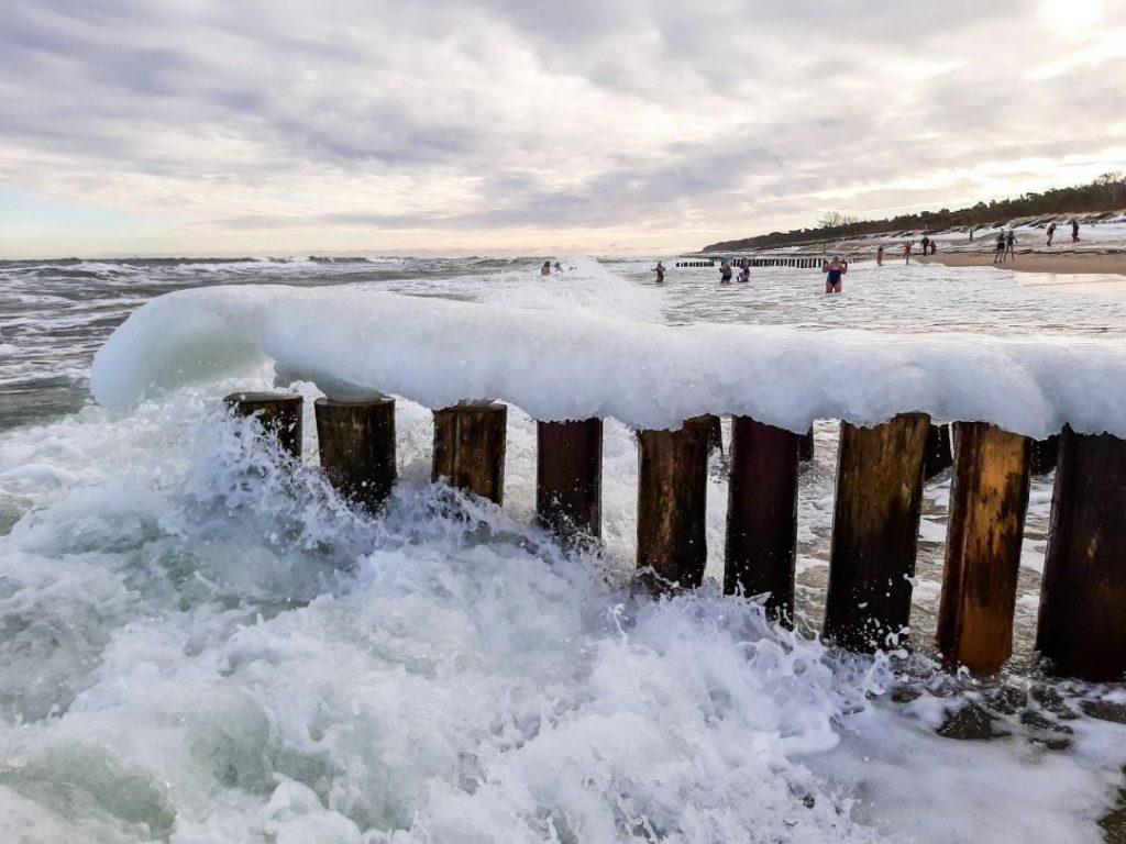 Nordowe Morsy, plaża Władysławowo (2021)