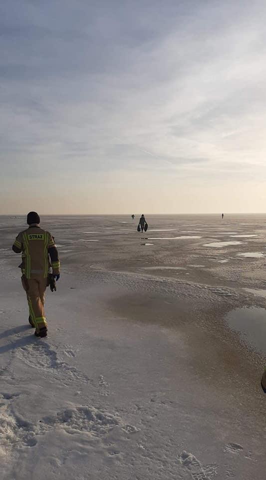 Ptasia grypa, powiat pucki: martwe łabędzie na Zatoce Puckiej