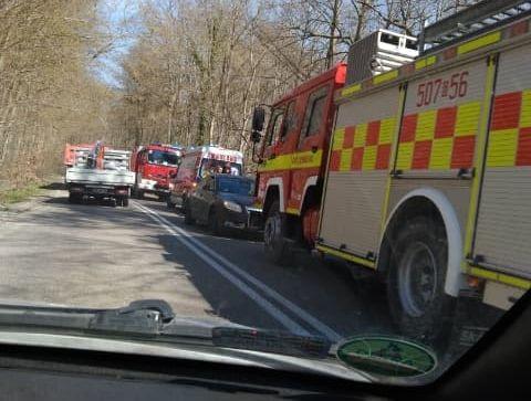 wypadek Leśniewo