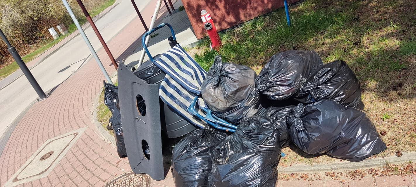 Jastrzębia Góra: góra śmieci w wąwozie. Turyści to skarb, ale też kłopot | ZDJĘCIA