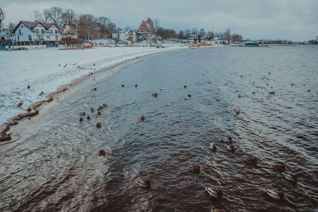 zatoka pucka zima 2021