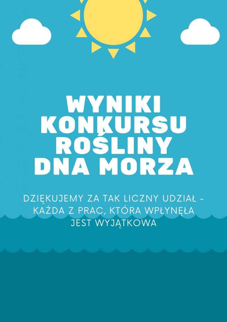 plgr władysławowo merk mural