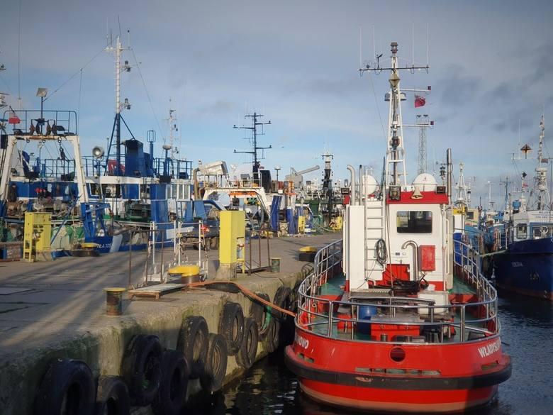 kutry władysławowo port